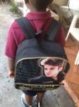 My son love to sing Justin Bieber song never say never and talk about him I was very excited to find his backpack for my son I got home this boy told me he is not a girl he's not in love with Justin he only likes his songs I had to goggle Just